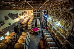 asconi_winery__60_