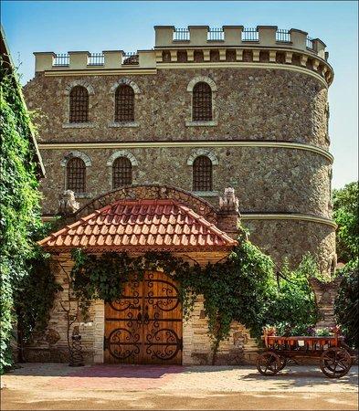 chateau-cojusna