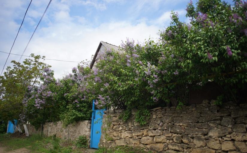 Pohrebea Village