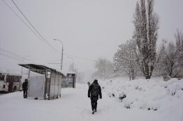 Street in snow
